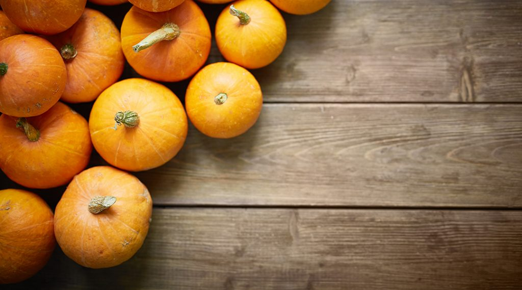 Holiday Marketing Planning Using Autumn Gourds