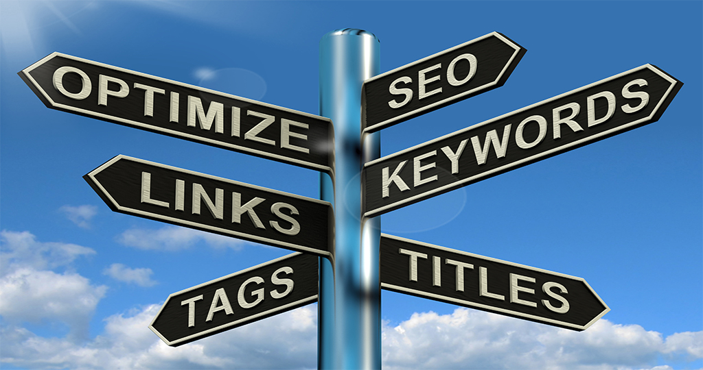 SEO can take you in many directions
